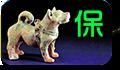中华田园犬科普与保护